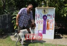 Ünye'de Yetişen Şampiyon Av Köpeği Ekin