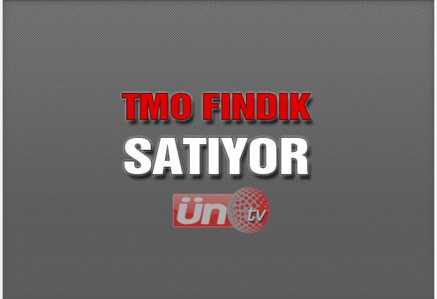 TMO 2017 Fındığını Satışa Çıkardı