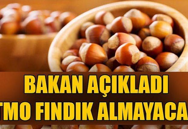 BAKAN AÇIKLADI TMO FINDIK ALMAYACAK !