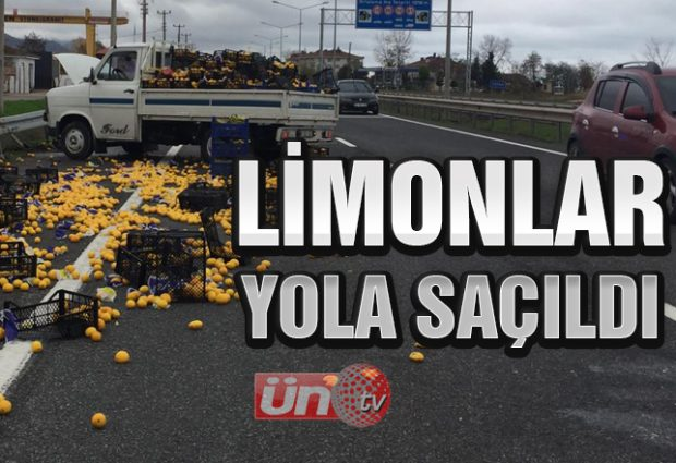 Limon Yüklü Kamyonet Kaza Yaptı