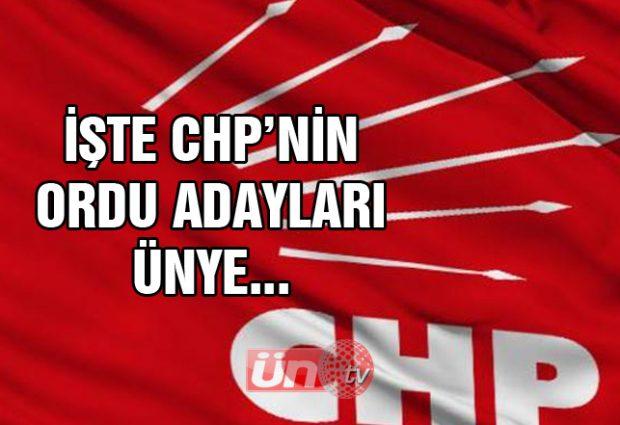 İşte CHP'nin Ordu Adayları