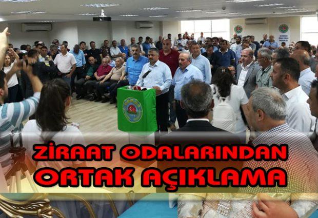 """""""Fındıkta Oynanan Oyun Apaçık Ortadadır"""""""