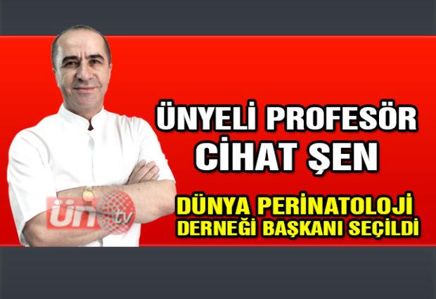 Ünyeli Profesör Şen Dünya Perinatoloji Derneği Başkanı Seçildi
