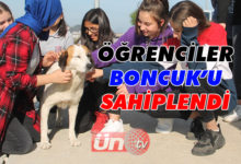 Öğrenciler Boncuk'u Sahiplendi!