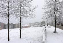 Akkuş Belediyesi Karla Mücadele İçin Tedbir Aldı