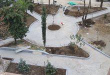 Belediye Parkında Ağaç Dikim Çalışmaları Tamamlandı